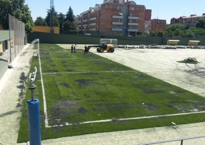 Césped para campos de fútbol (2)