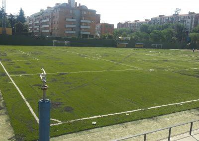 Césped para campos de fútbol (3)