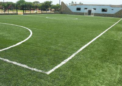 Césped para campos de fútbol (4)