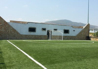 Césped para campos de fútbol (5)